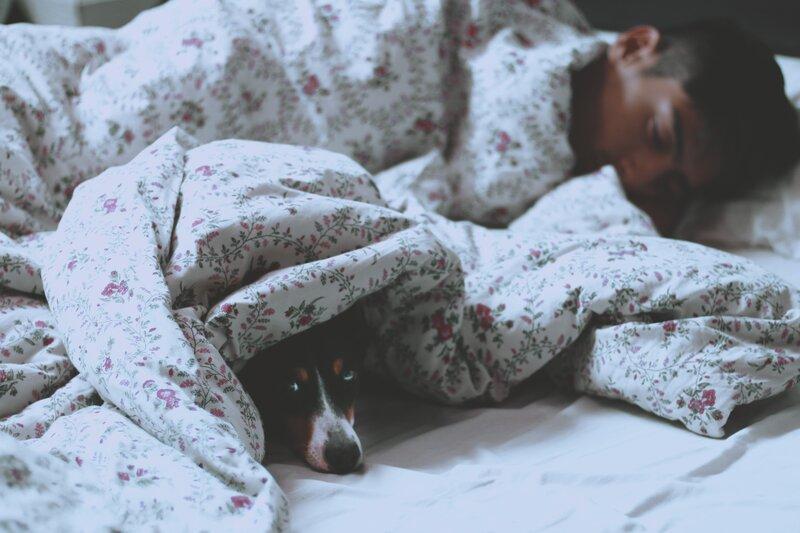 muž so psom v posteli